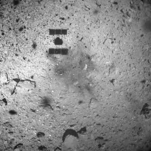 Grainy image of the probe's landing zone