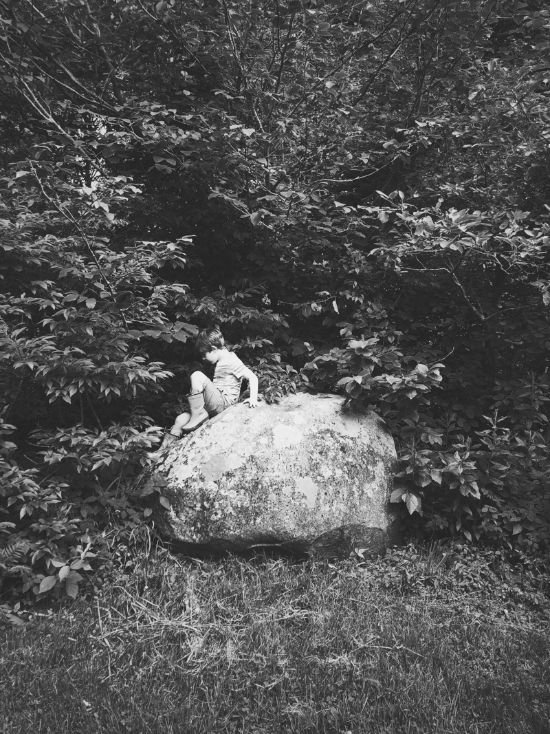 Young child climbing on a large boulder.