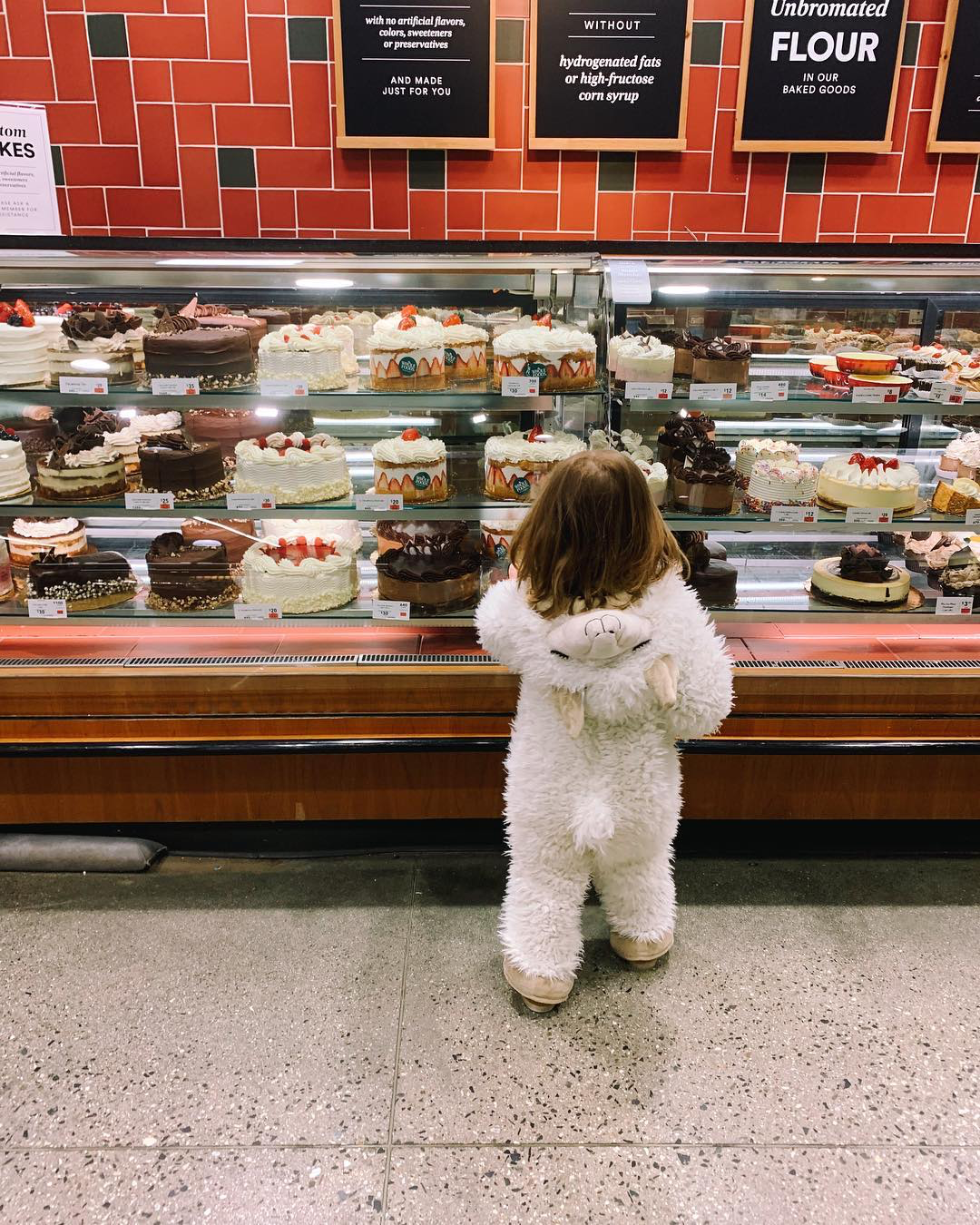 Child wearing a llama costume looking at a case of cakes in a bakery.