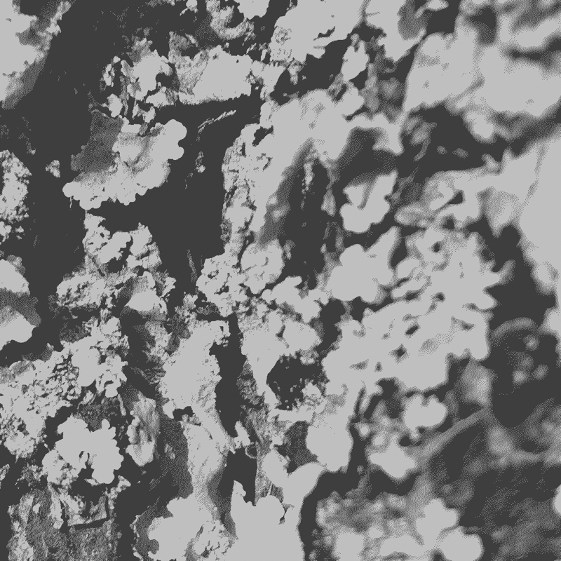Macro image of lichen on a tree. Heavily dithered.