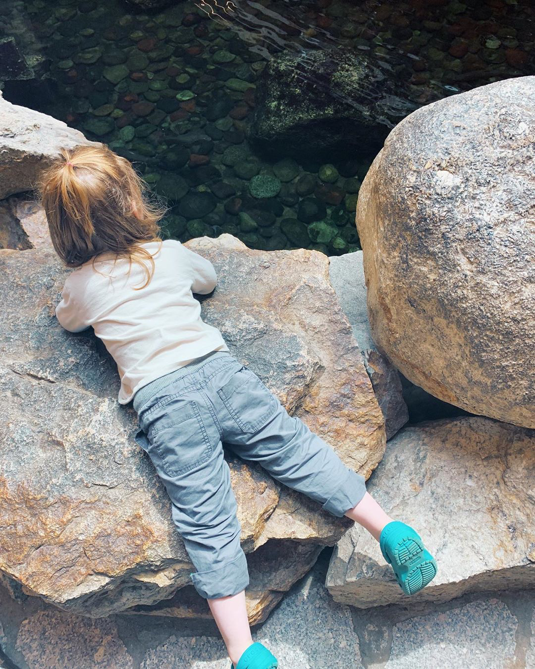Young child lying on some rocks looking at an indoor pond.