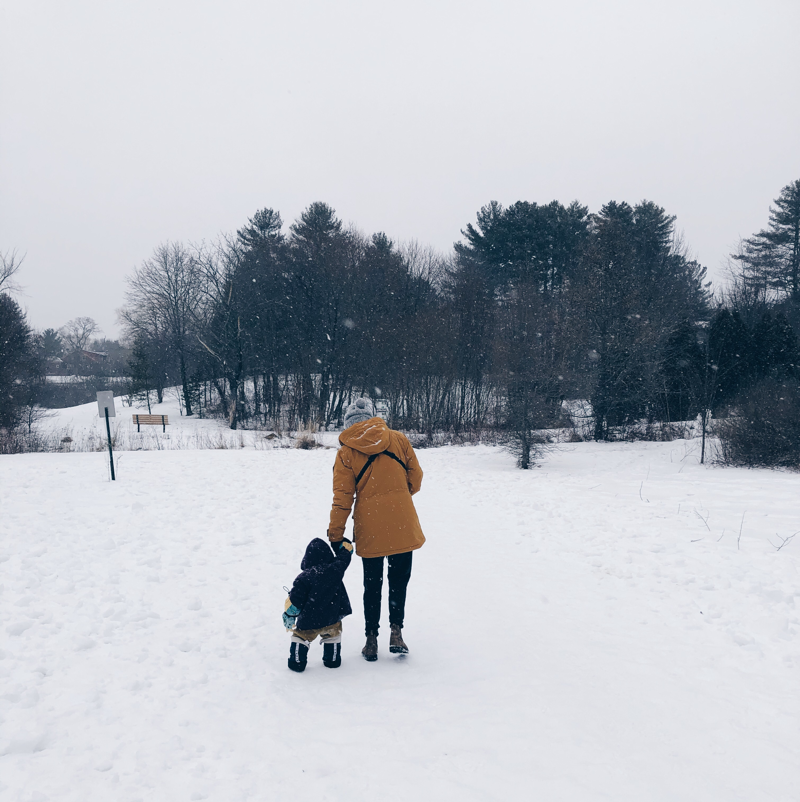 A parent and toddler are bundled in winter gear, walking in a moderate snow along a path.