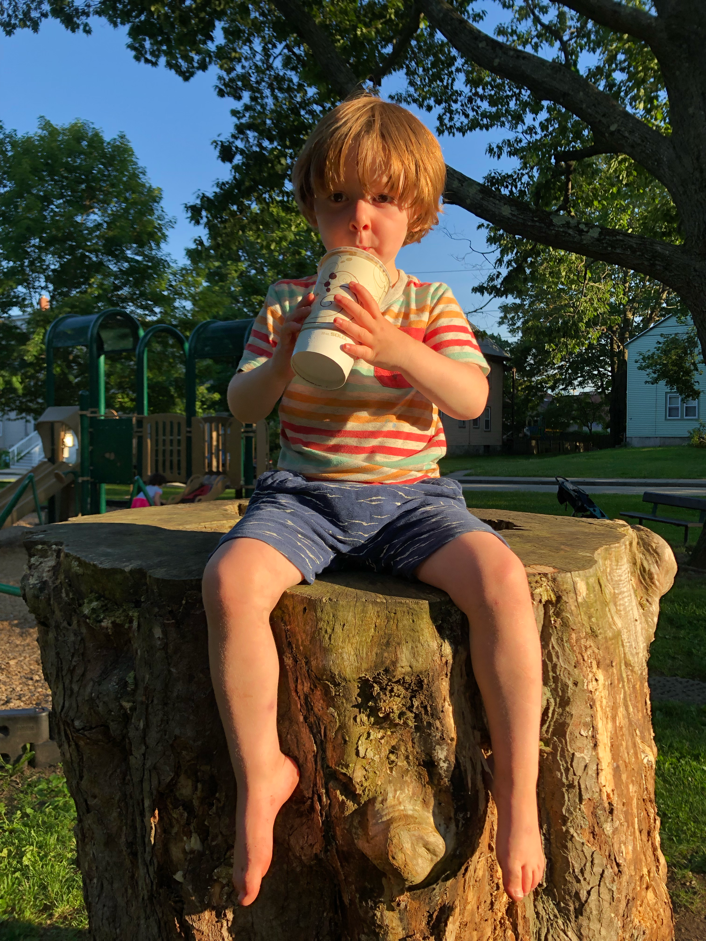 Kid in striped shirt sitting on a stump, drinking a chocolate milkshake from a paper cup.